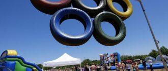 Деревенские летние игры, или Redneck Summer Games