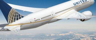 Самолеты будут летать на экскрементах животных