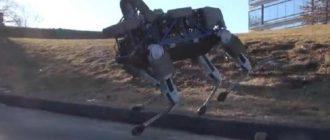 С американскими морпехами служит собака-робот